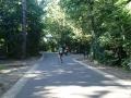 4 Heerlijk fietsen